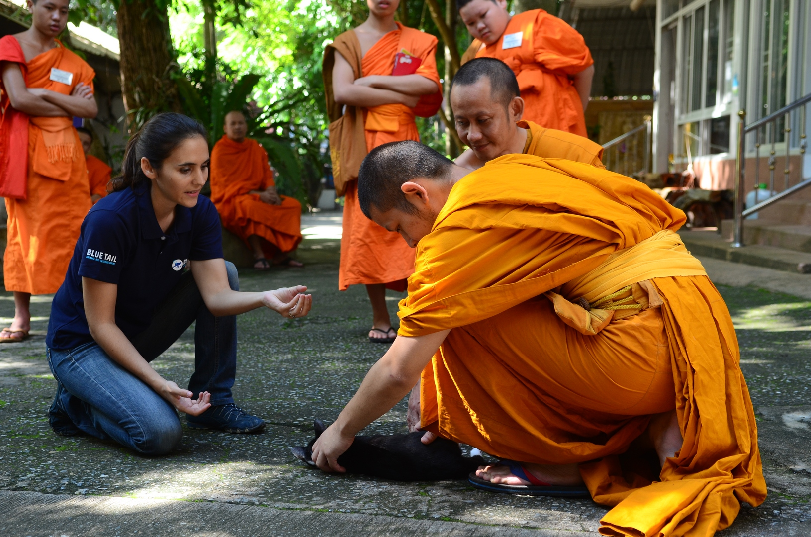 Animal welfare and humane handling training for monks
